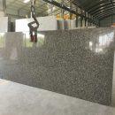 Doera gold granite gangsaw slab supplier