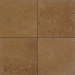 Asian Gold Sandstone